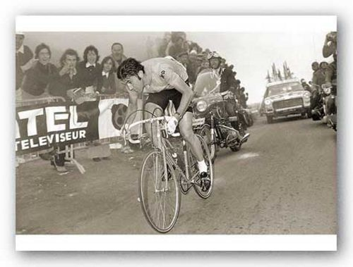 Merckx Dominates by Sports Pressee
