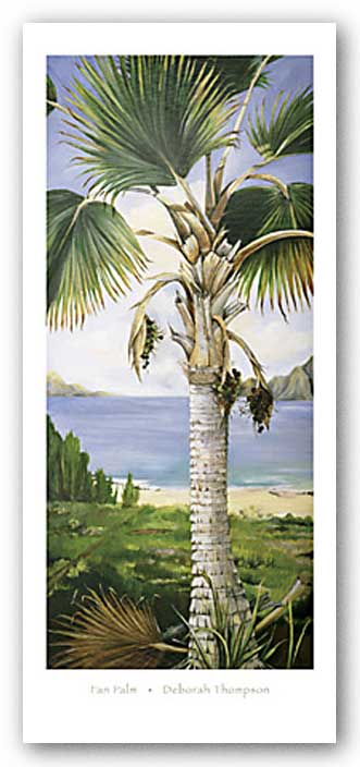Fan Palm by Deborah Thompson