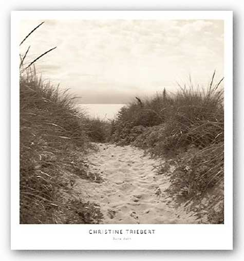 Dune Path by Christine Triebert