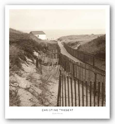 Dune Fence by Christine Triebert