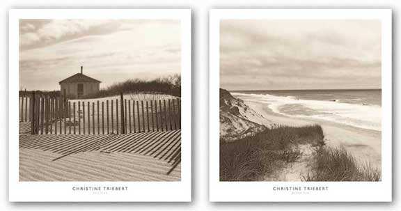 Wellfleet Dune and Dune Shack Set by Christine Triebert