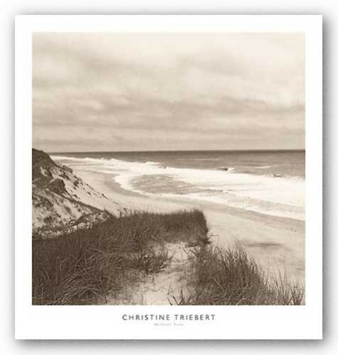 Wellfleet Dune by Christine Triebert