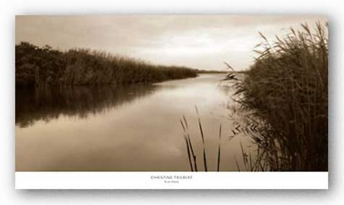 River Reeds by Christine Triebert
