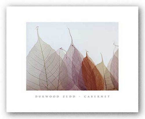 Cabernet by Durwood Zedd