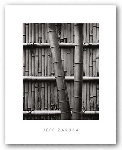 Bamboo and Wall by Jeff Zaruba