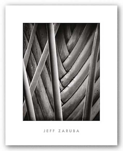 Palm Pattern by Jeff Zaruba