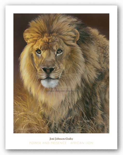 Power and Presence - African Lion by Joni Johnson-Godsy