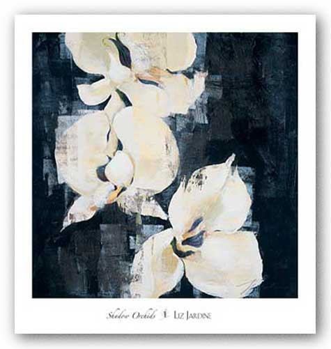 Shadow Orchids II by Liz Jardine