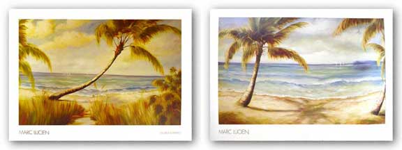 Shoreline Palms Set by Marc Lucien