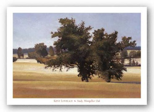 Study, Montpelier Oak by Kent Lovelace