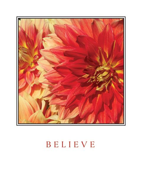 Believe Flowers by Maureen Love
