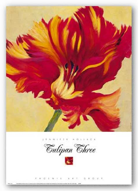 Tulipan Three by Jennifer Hollack