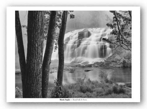 Bond Falls and Trees by Monte Nagler