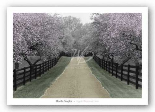 Apple Blossom Lane by Monte Nagler