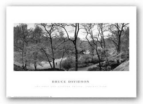 The Pond and Gapstow Bridge by Bruce Davidson