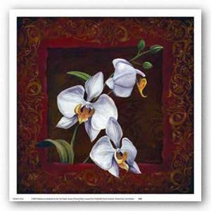 Orchid Study I by Thomas Wood