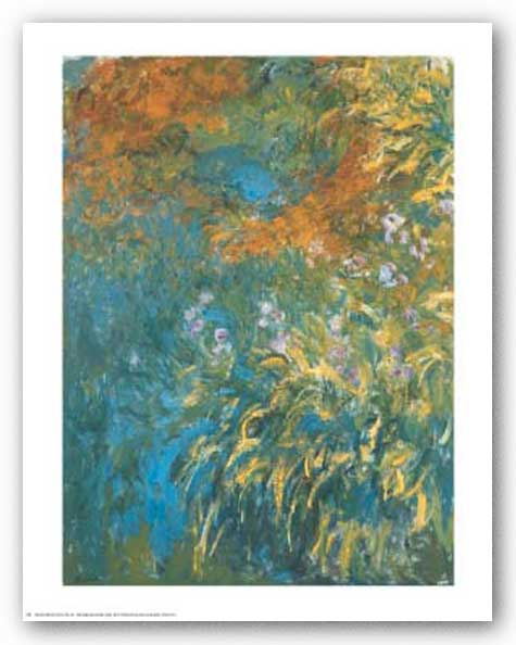 Yellow Iris by Claude Monet