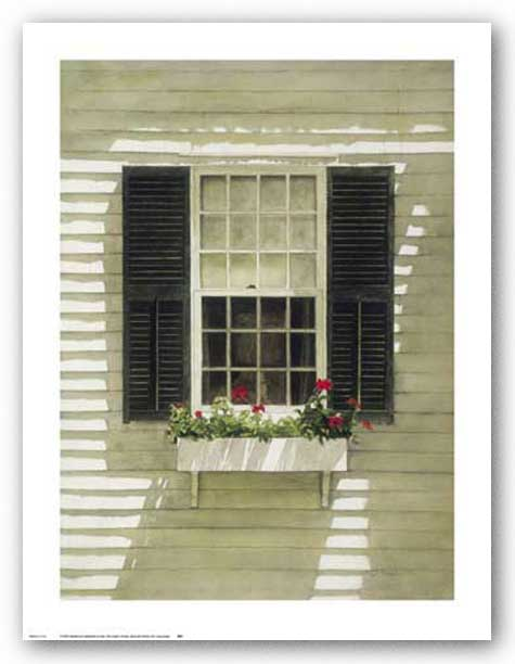 Nantucket Window Box by Douglas Brega