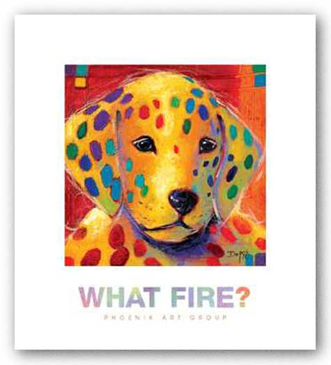 What Fire? by Karen Dupre