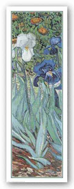 Iris by Vincent Van Gogh