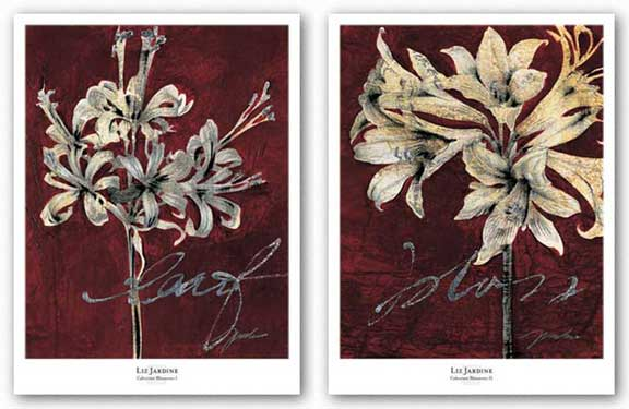 Cabernet Blossoms Set by Liz Jardine