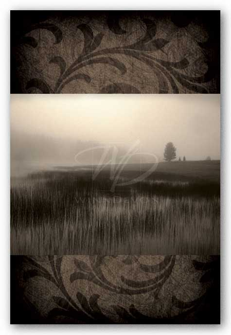Misty Morning by Janel Pahl