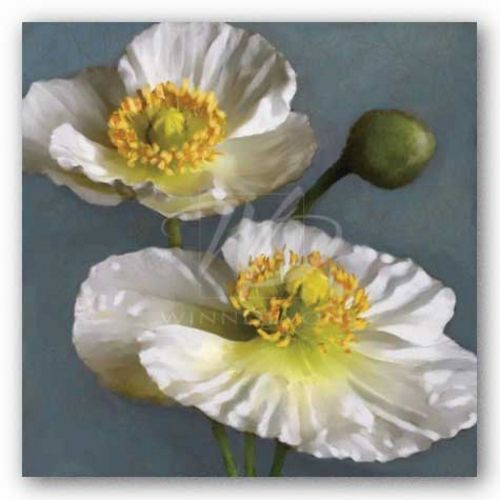 Poppy Parfait I by Janel Pahl