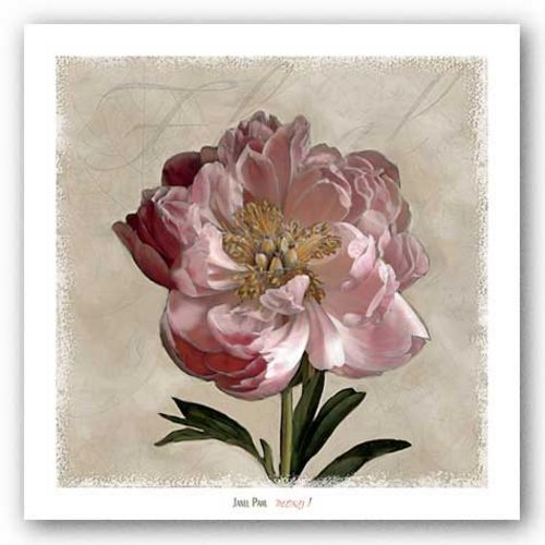 Peony I by Janel Pahl