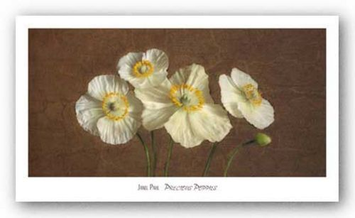 Precious Poppies by Janel Pahl