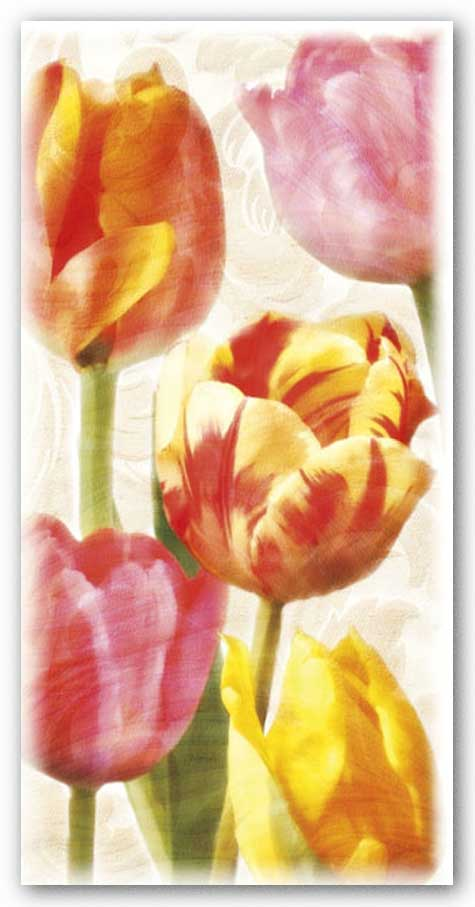 Glowing Tulips II by Janet Pahl