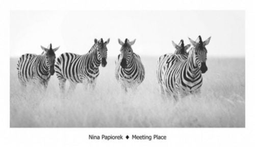 Meeting Place by Nina Papiorek