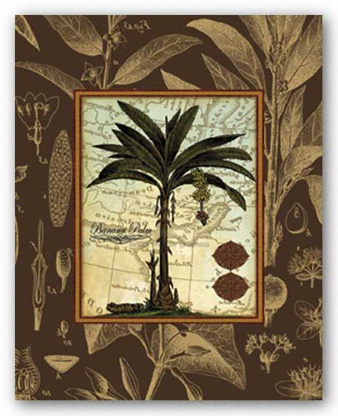 Banana Palm (Brown) by Karl Rattner