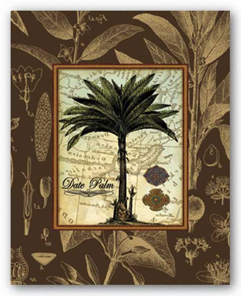 Date Palm by Karl Rattner