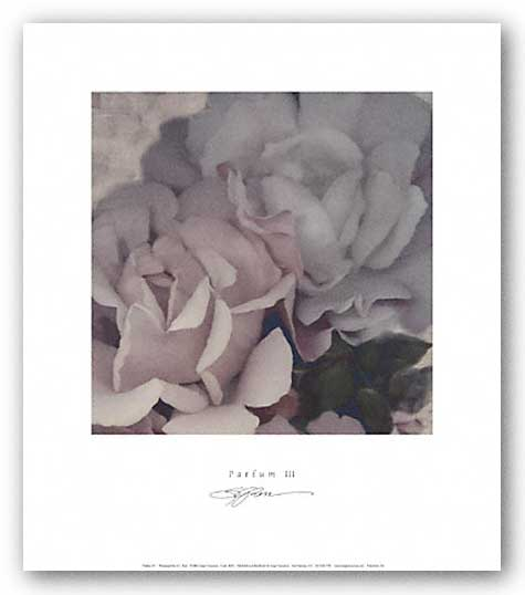 Parfum III by S.G. Rose