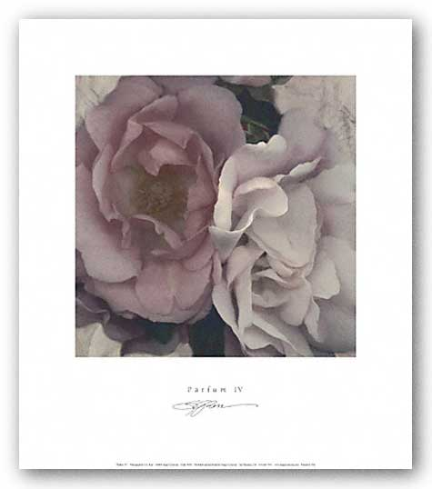 Parfum IV by S.G. Rose