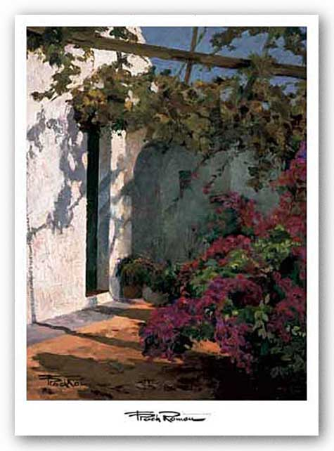 Bougainvillea and Vine by Poch Romeu
