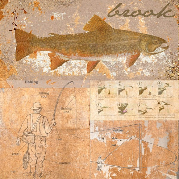 Brook Trout by Andrew Sullivan