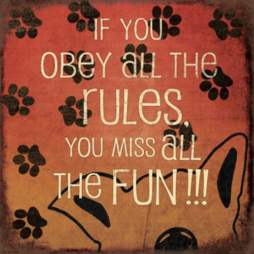 If You Obey All The Rules by Jo Moulton