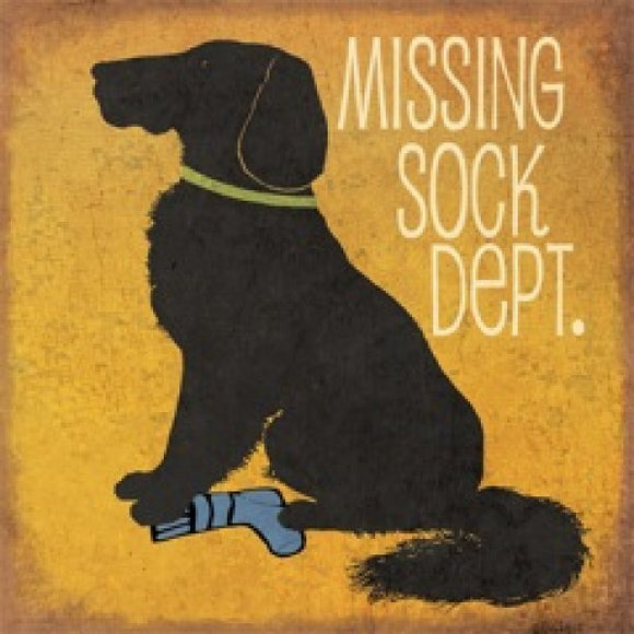 Missing Sock Department by Jo Moulton