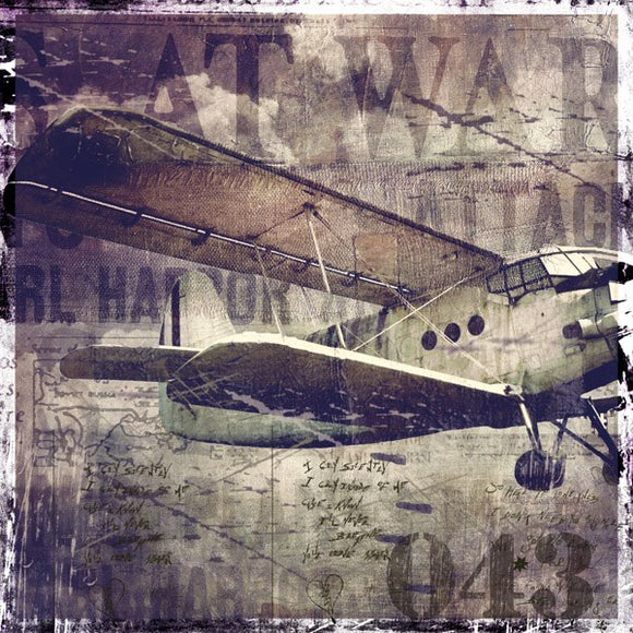 Vintage War Aircraft by Mindy Somners