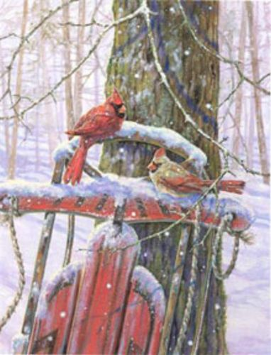 Red Sled With Cardinals by Donna Race