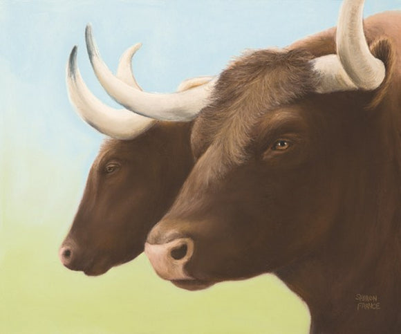 Best Buddies Bulls by Sharon France