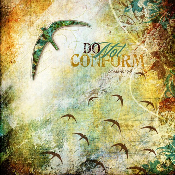 Do Not Conform by Sally Barlow