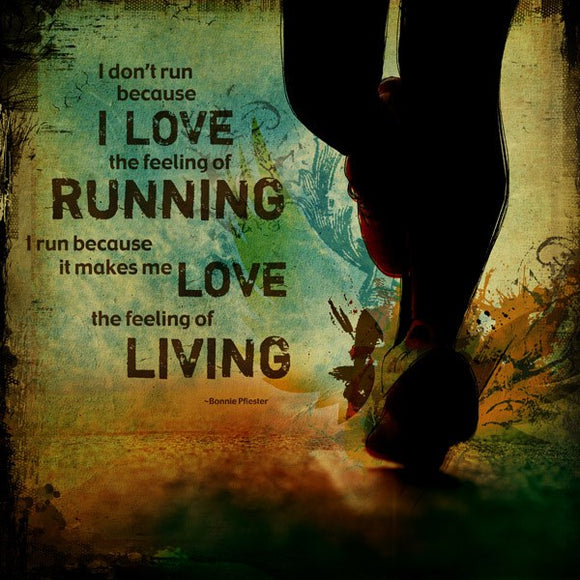 I Run Because It Makes Me Love Living by Sally Barlow