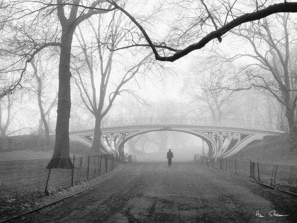 Gothic Bridge Central Park NYC by Henri Silberman