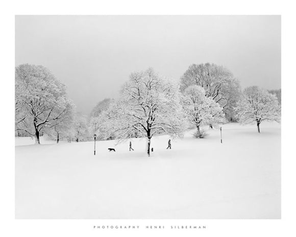 Prospect Park Brooklyn in Snow by Henri Silberman