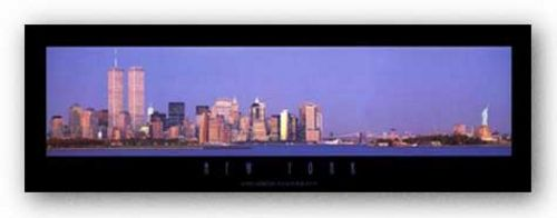 New York City Panorama by Jerry Driendl