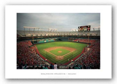 Dolphins Stadium, Florida Marlins by Ira Rosen
