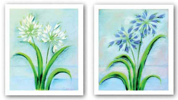 Agapanthus Set by Dona Turner