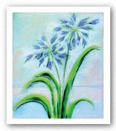 Purple Agapanthus by Dona Turner